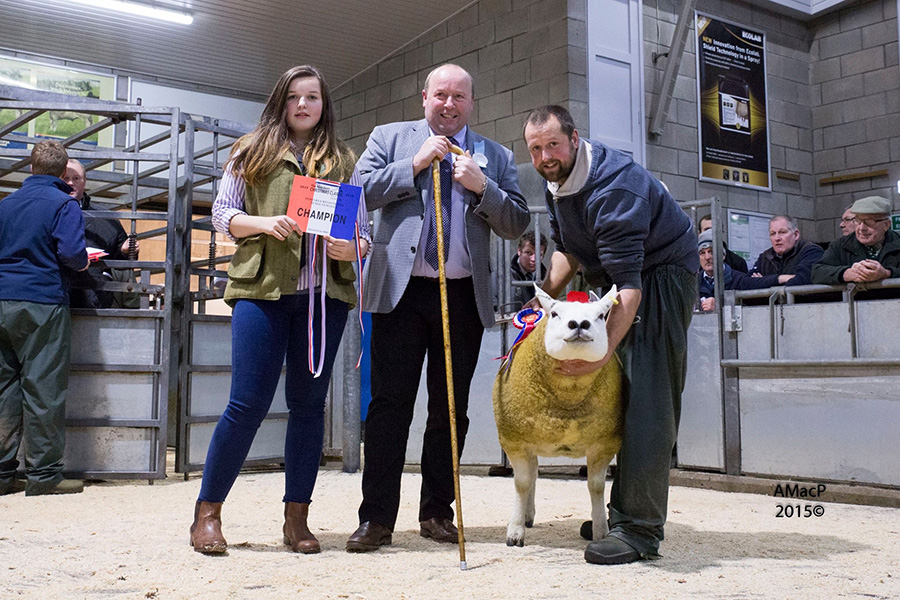 Iain-and-Jemma-with-their-champion-ewe-at-the-christmas-classic-2015-RESIZE